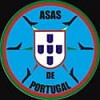 Asas de Portugal (Portuguese Air Force Aerobatic Team)